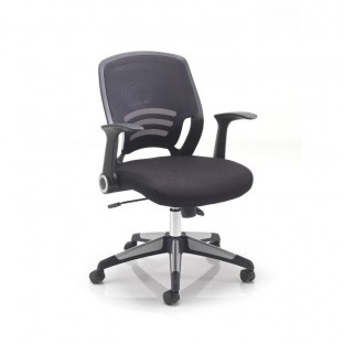 Carbon Mesh Back Task Chair
