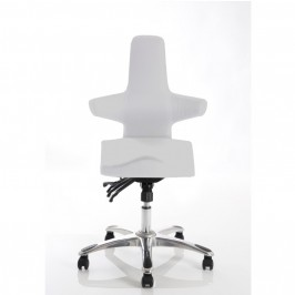 Saltire Posture Office Chair