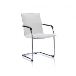 Echo Cantilever Chair
