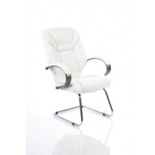 Galloway Leather Cantilever Chair